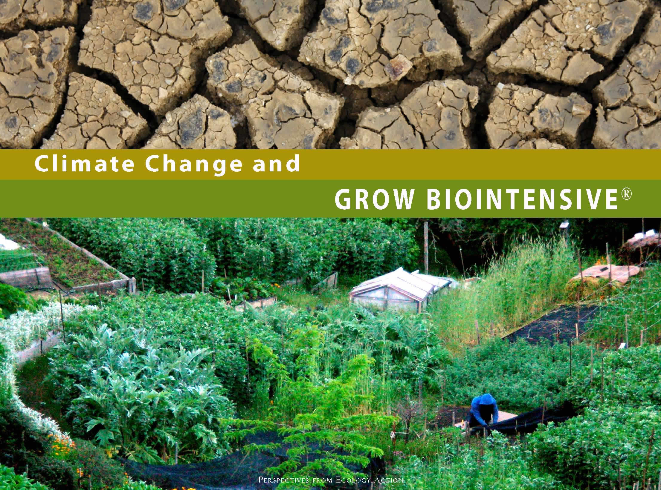Climate Change and GROW BIOINTENSIVE Booklet Cover