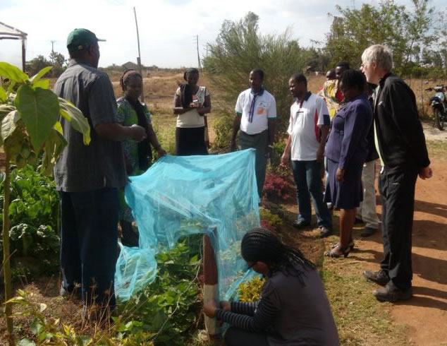 Participants learn about seed saving and seed enclosures