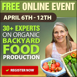 Free Online Event