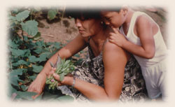 Mother and Child Growing Food Using the GROW BIOINTENSIVE Method